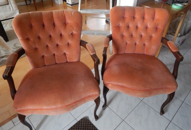 """Lovely"" salmon coloured velvent Queen Anne chairs."